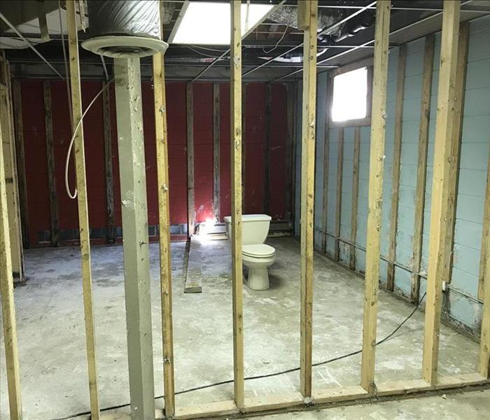 Severe Mold Growth in Lenoir, NC After