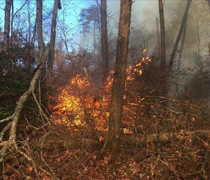 Wildfires in Alexander and Caldwell Counties