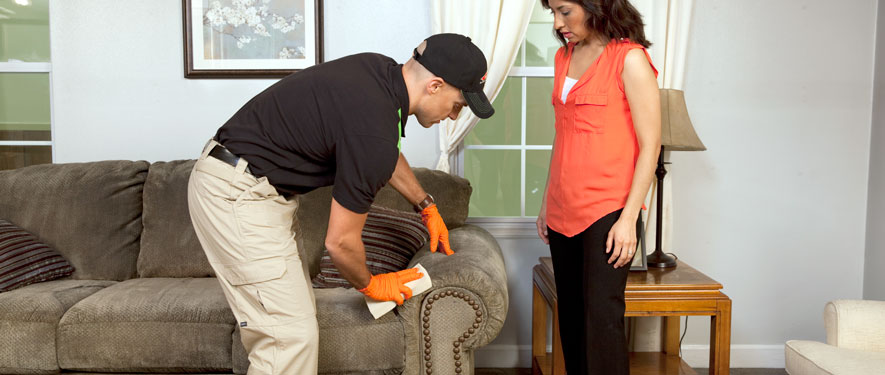 Lenoir, NC carpet upholstery cleaning